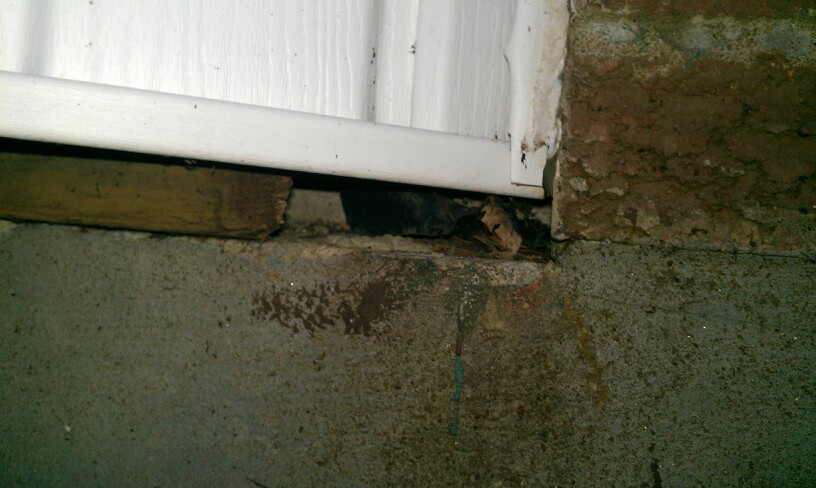 This small opening at the bottom of a bay window is perfectly sized for mice