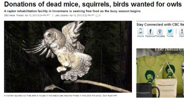 Hospital Seeks Out Dead Animal Donations to Keep Birds Alive