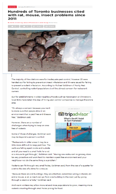 Why Businesses Need Professional Rodent Control