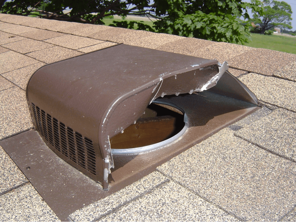 Wildlife proof roof vents skedaddle wildlife control for Cupola vent