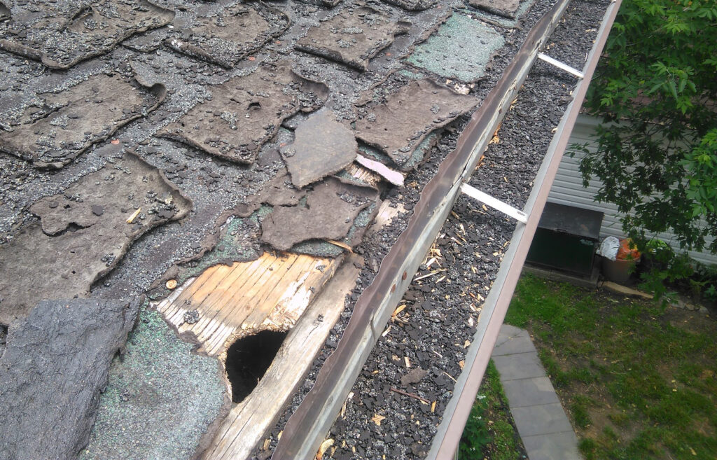 Damaged Shingles from Squirrels