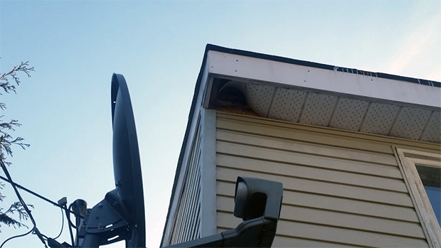 Raccoons were able to scale the corner of this house, push in the soffit and enter the attic.