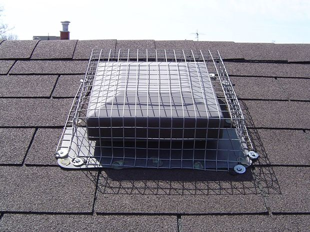 The roof vent screening Skedaddle Humane Wildlife Control installed will keep squirrels out- we guarantee it for life.