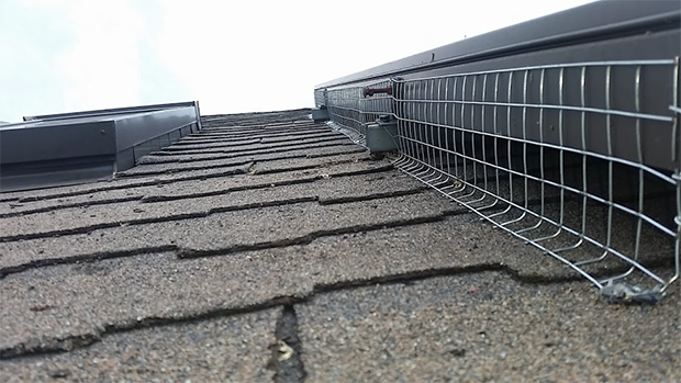 Skedaddle Humane Wildlife Control screens around solar panels to prevent squirrels and birds from nesting underneath the panels, and causing damage.
