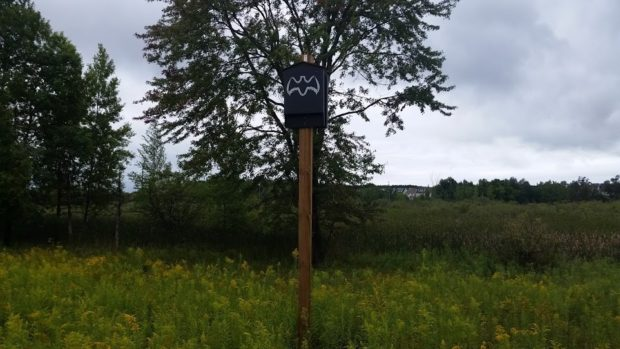 A bat house erected in an open space