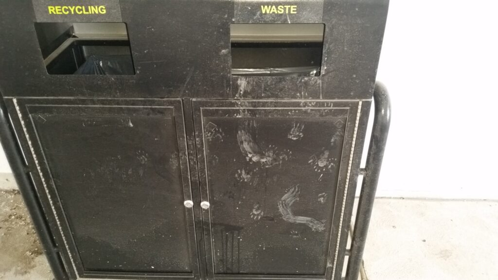 Raccoon paw prints on a public garbage receptacle