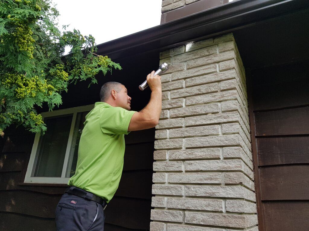 A thorough inspection of your home is needed to properly diagnose the problem and form a customized removal, clean up and prevention plan.