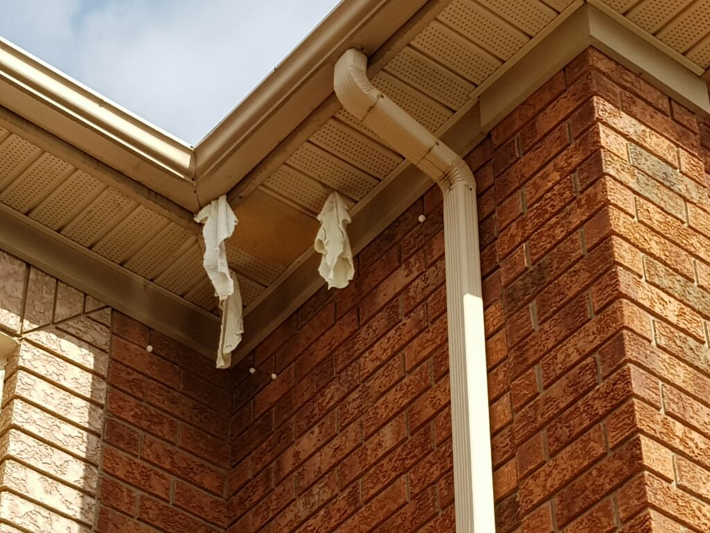 rags in soffit