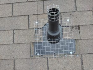 Pipe vent screen