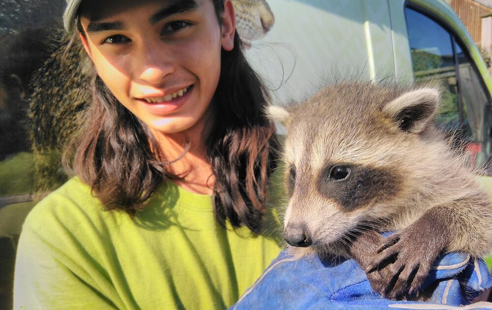 Technician with Baby Raccoon